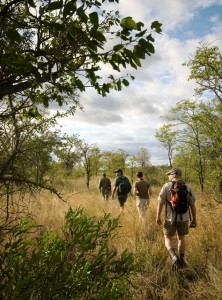 Limpopo Hiking Trails
