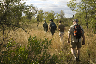 Walking Trails in Parc Nacional do Limpopo