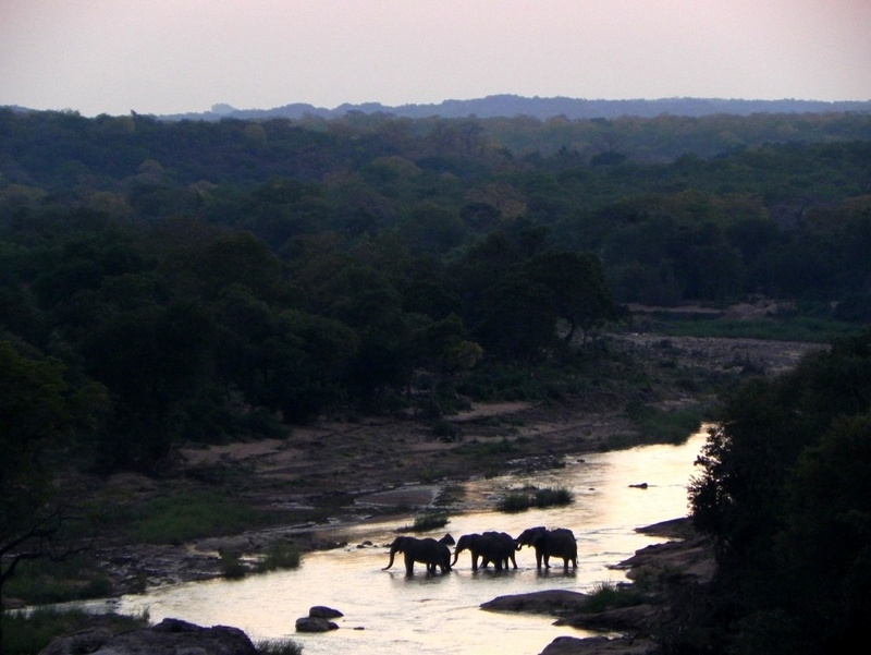 Elephant crossing below Mutale Falls camp